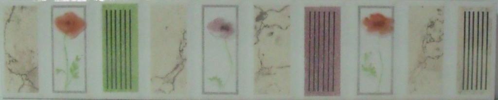 5004 Image